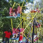 large ferris wheel carnival rides