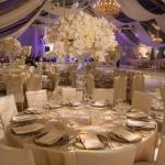 #bestweddingplanners