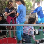 kids-party-petting-zoos