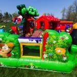 Backyard.ToddlerCombo