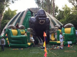 Obstacle.Course-King.Kong