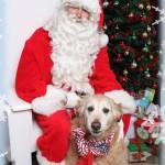 Santa.For.Hire